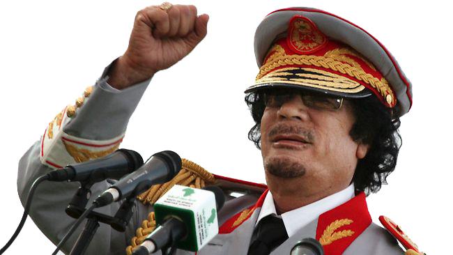 Gaddafi loyalist